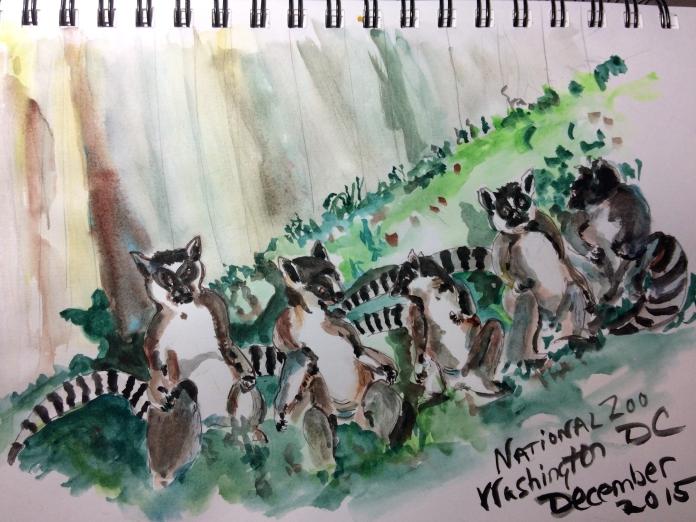 Zoo sketch 1