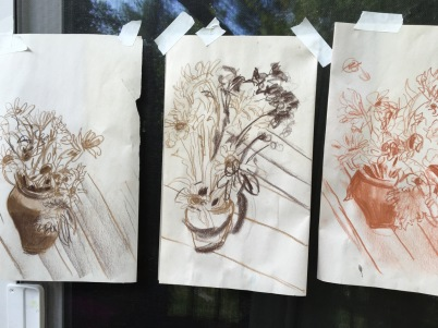 sunflower-sketches